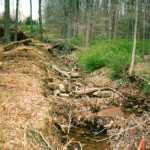 Before: Years of water runoff have resulted in soil erosion and disrupted the natural flow of the land.